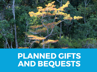 planned_gifts