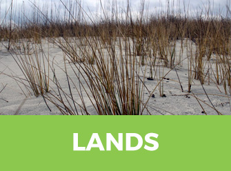 NC Coastal Land Trust Protected Lands and Waters