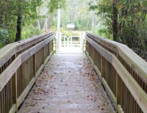 Oakhurst Nature Park – Jacksonville