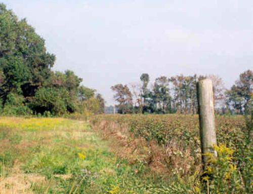Rayburn Farm