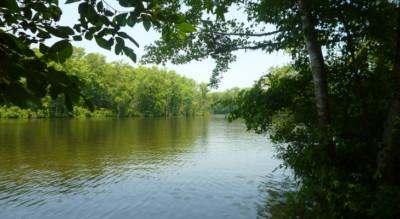 chowan river